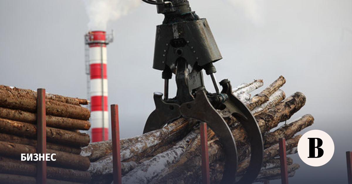 Правительство обновило Стратегию развития лесного комплекса России до 2030 года
