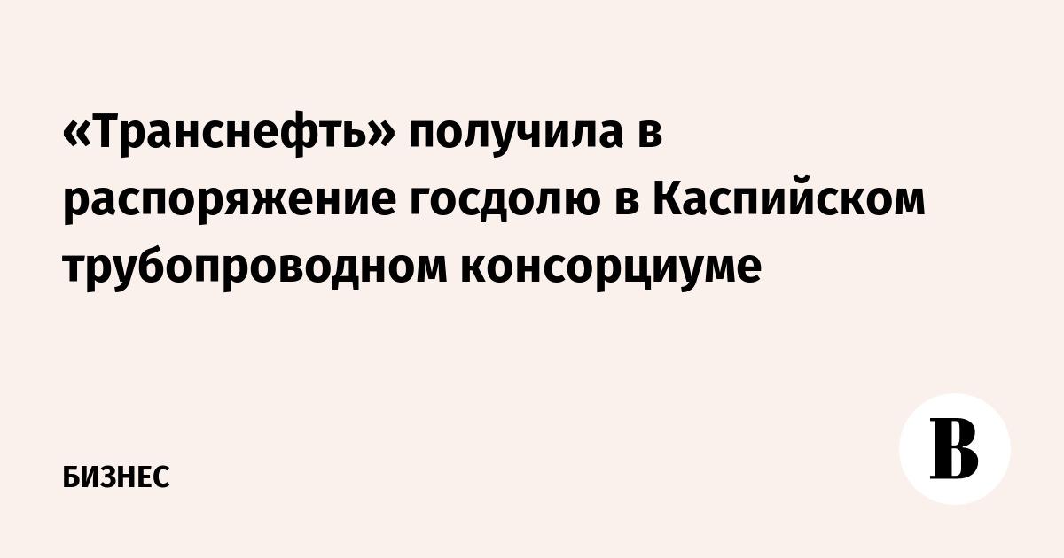 «Транснефть» получила в распоряжение госдолю в Каспийском трубопроводном консорциуме