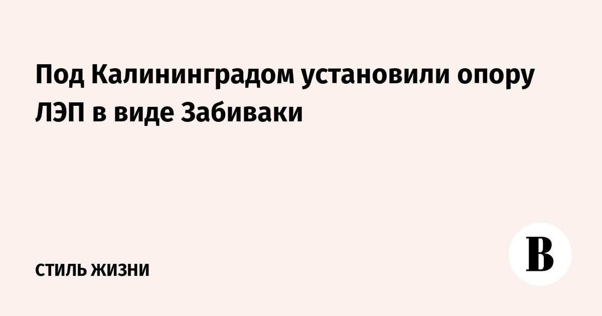 Под Калининградом установили опору ЛЭП в виде Забиваки