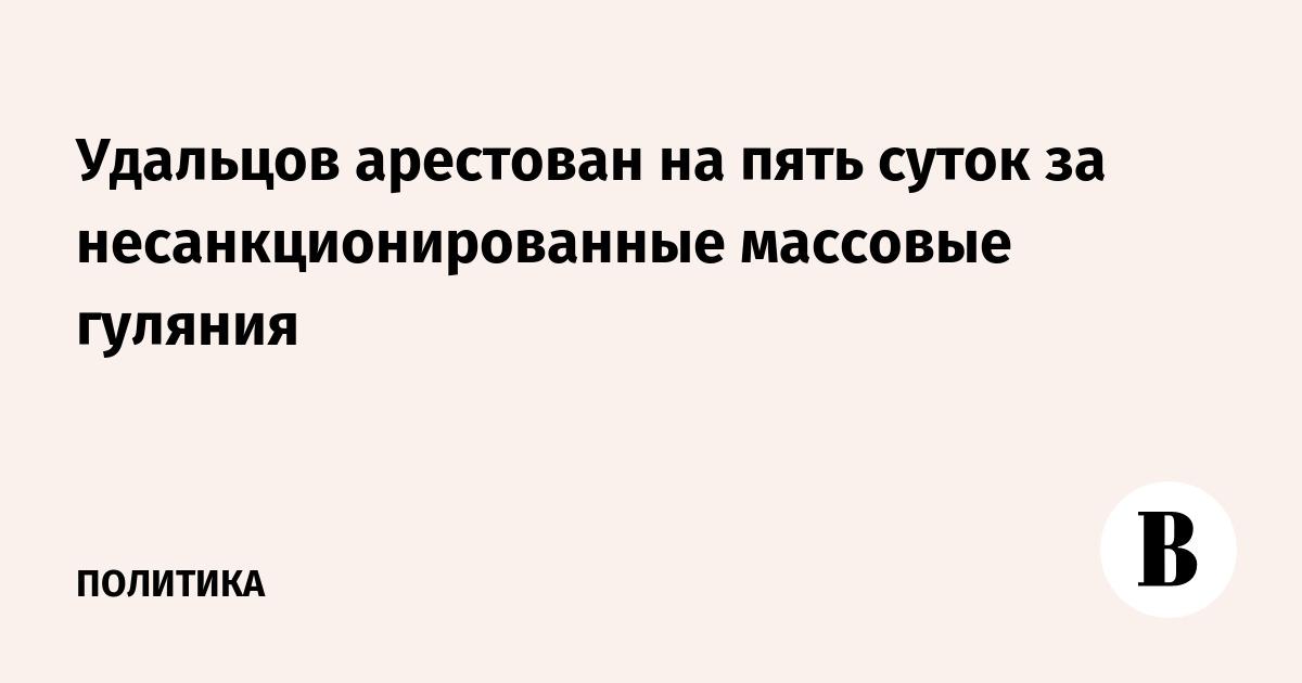 Удальцов арестован на пять суток за несанкционированные массовые гуляния