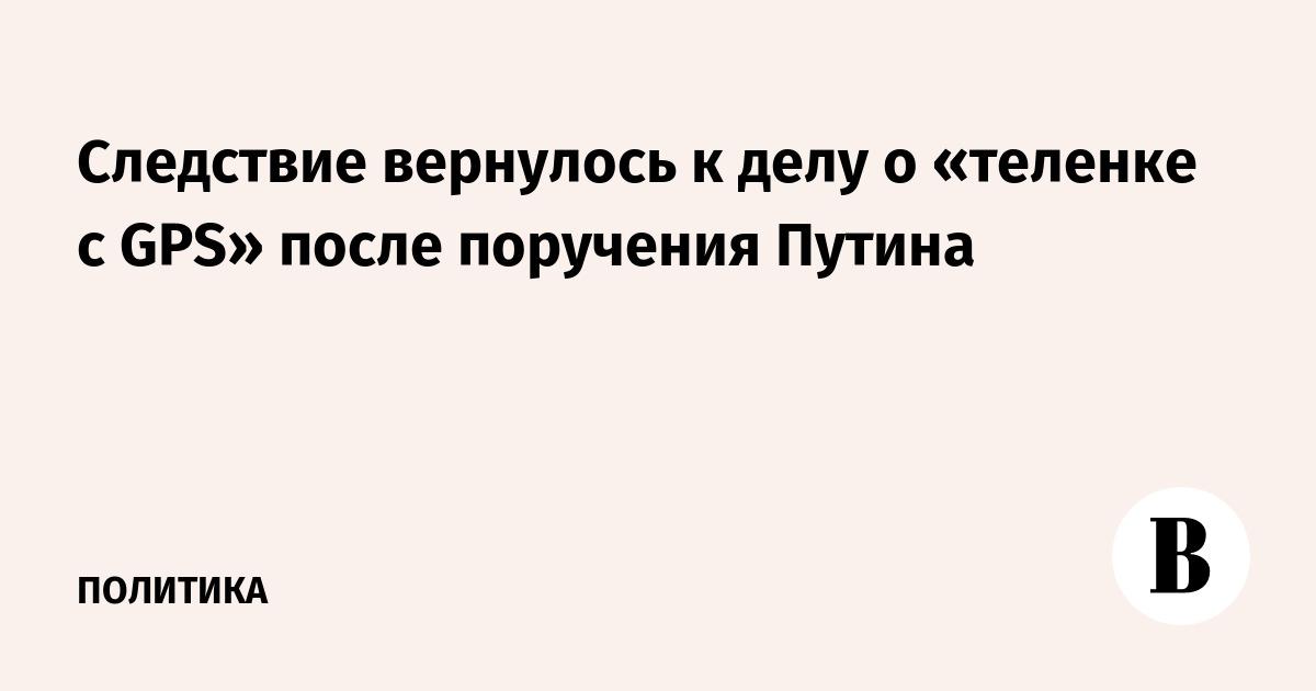 Следствие вернулось к делу о «теленке с GPS» после поручения Путина