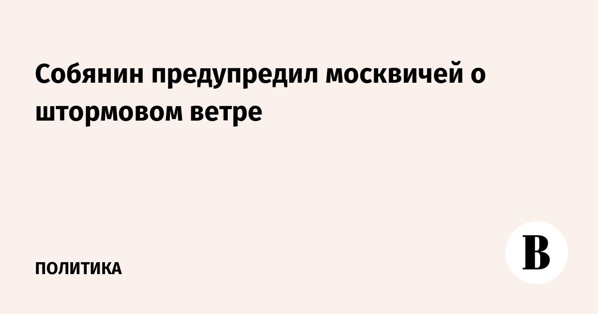 Собянин предупредил москвичей о штормовом ветре